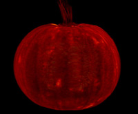 Pumpkin-T1-Small.jpg
